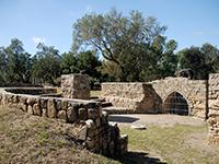 גן לאומי אשקלון - המלצות טיול בארץ