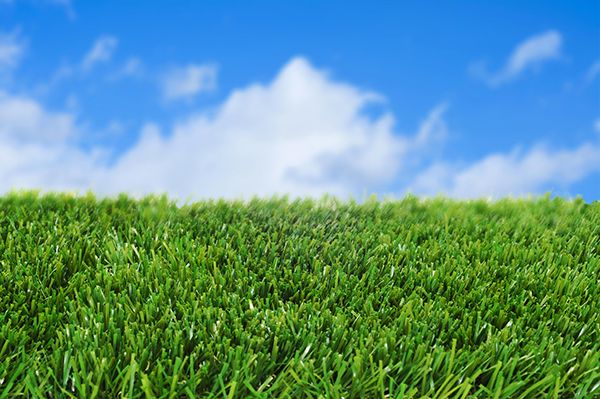 תחזוקה נכונה של דשא סינטטי