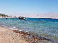 המלצות על שמורת טבע חוף האלמוגים