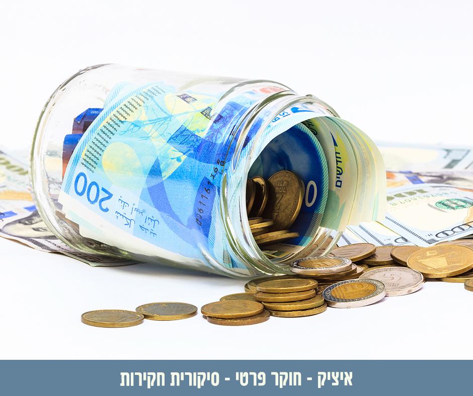 חקירה כלכלית - הדרך היעילה לאיתור מידע כלכלי