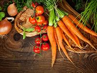 הוספת ירקות לתזונת הילדים