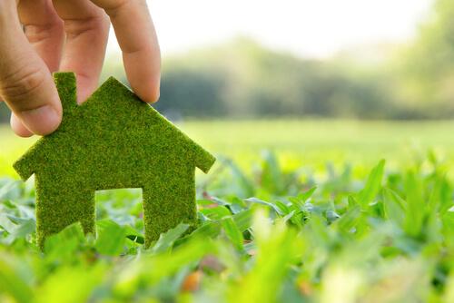 עיצוב ירוק – איך לשמור על הסביבה וגם ליצור מקום שנראה טוב?