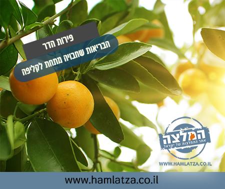 פירות הדר – הבריאות שחבויה מתחת לקליפה