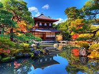 טיול לקיוטו, יפן