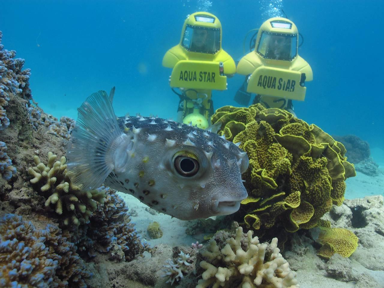 צלילה בצוללת אישית