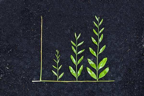 איך הפנסיה שלנו תורמת לאיכות הסביבה